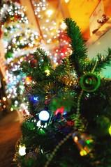 Christmas season (Jun-jun2015) Tags: streetsnap japan gr sinagawa ricoh christmas xmas illumination christmastree