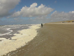 MVI_2000 Algenschaum/Nordsee/Egmond/See the previous one! (Traud) Tags: holland nordholland nederland netherland niederlande egmond egmondaanzee nordsee strand meer sea sturm algenschaum algen video