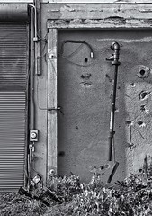 Exterior Wall (jores59) Tags: dorchester dorchesterma boston bostonma portnorfolk portnorfolkparkredemptionandrestorationproject