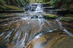Leura Cascades (affectatio) Tags: leuracascades leura waterfall waterfalls falls bluemountains newsouthwales nsw sony a77mk2 a77ii tokina 1116mm