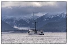Cinnabar with Misty Chichagof Island 2970 (Gillfoto) Tags: boat fishing commercial alaska tenakee landscape southeastalaska chichagofisland