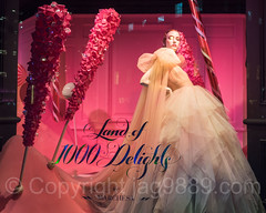 """Land of 1000 Delights""  2016 Holiday Window Display at Saks Fifth Avenue, New York City (jag9889) Tags: saksfifthavenue jag9889 usa manhattan dress fashion fifthavenue outdoor 2016 christmas holiday candy midtown windowdisplay woman window display 20161201 couture newyork newyorkcity mannequin 5thavenue departmentstore flagship ny nyc saks storewindow unitedstates unitedstatesofamerica us"