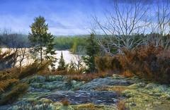 Looking Down (Lindaw9) Tags: treeline spruce tree rock moss junipers poplar sky painterly northern ontario
