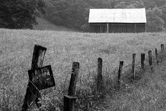 Barn In The Mist (rickhanger) Tags: barn farm mist misty landscape fence fenceline posted blackwhite bw