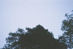 (aquieu) Tags: statepark two minnesota 35mm north shore northshore mn lakesuperior harbors disposable gooseberryfalls