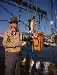 Recording the day's catch at the docks in Sarasota, Florida (State Library and Archives of Florida) Tags: fish docks boats fishing fishermen florida 1950s rigging redsnapper transparencies commercialfishing seafoodindustry statelibraryandarchivesofflorida josephjanneysteinmetzcollection