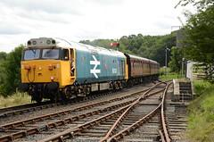 50031 'Hood' Class 50 (Simon Crowther Photography) Tags:
