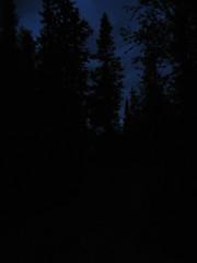 Rädsla för mörkret (auzgos) Tags: landet skogen kväll kvällen sommarfoto rädsla sf130818