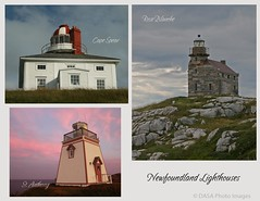 Lighthouses of Newfoundland (DASA Images) Tags: light lighthouse canada collage postcard guide beacon stanthony capespear roseblanche dasaimages