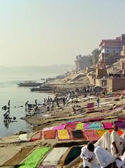 Drying Saris (emilyabrams) Tags: india river colorful holy laundry shore sacred varanasi hindu saree sari ganga drying ganges ghat linens