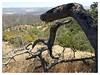 (dkrish) Tags: california landscape olympus midday zuiko pinnacles evolt e330 1454mmf2835