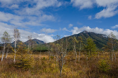 Senjōgahara (戦場ヶ原) (David Bertho) Tags: travel autumn mountain japan nikon nikko 18200 japon lightroom senjogahara d7000