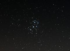 Pleiades 12.11.13 (Myrialejean) Tags: stars m45 maia astronomy messier taurus electra alcyone pleiades pleione celaeno asterope merope altlas messier45 d7100 taygeta sterope astrometrydotnet:status=solved astrometrydotnet:id=nova143815