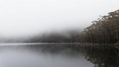 20131111-14-Lake Nicholls in mist.jpg (Roger T Wong) Tags: mist reflection outdoors nationalpark walk australia hike tasmania np bushwalk canonef1740mmf4lusm tramp mountfield canon1740f4l mtfield mtfieldnationalpark canoneos6d lakenicholls