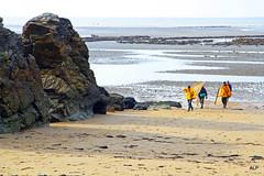 Retour de pche  la crevette grise en pays de Retz (Armeline73) Tags: panorama mer eau sable paysage plage rochers pche pcheurs paisible loireatlantique carrelet paysderetz canoneos7d