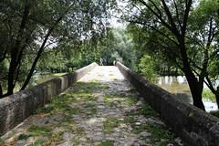 roman bridge over the river bosna ✿ (cyberjani) Tags: bridge river roman sarajevo bosnia explore bosna ilidža