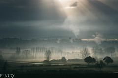 PBIMGP3607 (CatchAlive) Tags: morning nature fog campagne froid brouillard matin k3