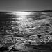 liquid metal days (nosha) Tags: usa beach beautiful beauty newjersey nj og oceangrove