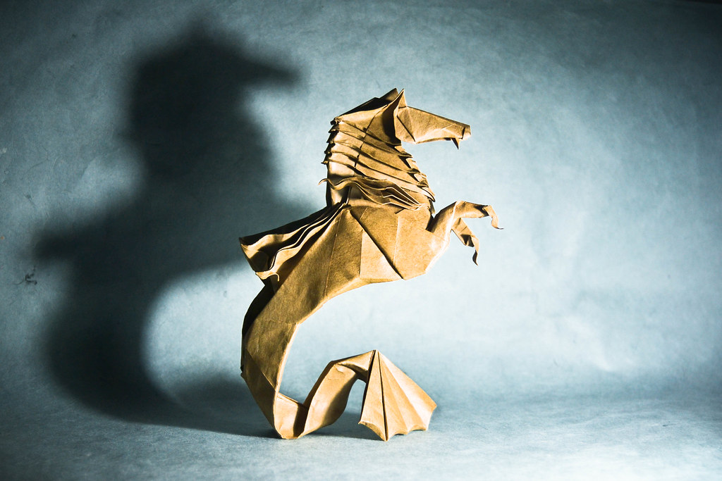 the worlds best photos of hippocampus and origami