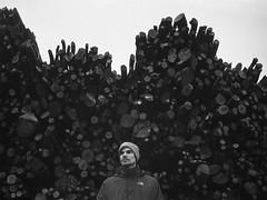 canon-rafael-10-as-Smart-Object-1 (Maurese Polizio) Tags: wood b portrait blackandwhite white black film forest teo hc110 contax lucky bianco nero foresta cansiglio 100iso shd100 139q
