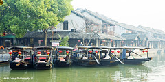 Morning - Xitang water village (Pic_Joy) Tags: china building water architecture river boat asia village traditional culture historic xitang  jiangnan  zhejiang        jiashan