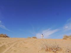 Mada'in Saleh (Mink) Tags: trip tour saudi arabia tombs saleh 2014 alula nabataean
