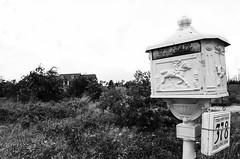 (Foto Haus) Tags: street blackandwhite color art abandoned beauty dark photography blackwhite nikon san texas decay fineart streetphotography documentary horror sanmarcos dslr exploration marcos wandering abandonment bastrop urbex photohaus fotohaus