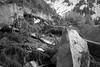 "La montagna suona Burzum • <a style=""font-size:0.8em;"" href=""http://www.flickr.com/photos/49429265@N05/14153759720/"" target=""_blank"">View on Flickr</a>"