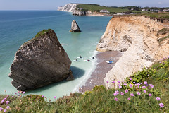 SUP at Freshwater Bay - IMG_9441 (s0ulsurfing) Tags: pink blue sky up sunshine canon coast spring may paddle fresh cliffs coastal thrift isleofwight coastline wildflowers sup 6d 2014 bay stand s0ulsurfing board freshwater