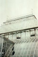 (my.secret.lover) Tags: love film nature forest 35mm lofi greenhouse zenit steampunk zcg livethere