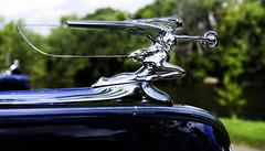 Packard Goddess of Speed (hz536n/George Thomas) Tags: riverside park orphans car show 2016 cs5 canon canon5d ef1740mmf4lusm michigan september summer ypsilanti carshow copyright packard riversidepark orphanscarshow goddessofspeed ornament