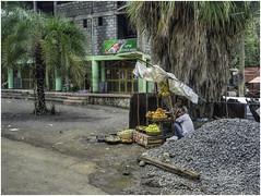Selling Fruit (Luc V. de Zeeuw) Tags: ethiopia fruit seller selling shop stones street tree weldiya amhara