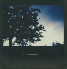 """Don't know why there's no sun up in the sky stormy weather"" (The Stugots) Tags: polaroid spectra impossible project color black frame instant film landscape rain raining sky clouds fall autumn october gloomy trees polaroidweek roidweek roid week snap it see snapitseeit pittsburgh pennsylvania evening"
