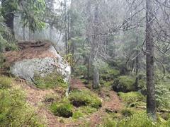 Tatra! (HBSoft72) Tags: huawei ascend mate 7 strbske pleso