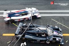 "Ligier JSP3 LMP3 -  Eurointernational ""Jay Palmer/Giorgio Mondini"" - European Le Mans Series 2016 (dj_edob) Tags: djedob telmogil telmogilfotografia motorsport circuitodoestoril nikon fx fullframe fia elms europeanlemansseries nikkor autosport motorsportcom lmp3 ligierjsp3 ligier eurointernational"