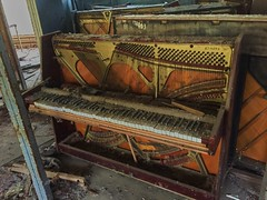Pripyat Piano Shop-(Chernobyl Exclusion Zone)_2 (Landie_Man) Tags: none pripyat chernobyl looted looting disused closed music piano pianist culture bars beats frets instrument grand fine radioactive radiation ionising shop store shut buy bought purchased forgotten play nuclear power plant the zone ukraine ussr cccp ccpp soviet union