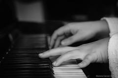 Pianista (Eleonora Cacciari) Tags: pianista musica pianoforte letsplaypiano piano eos1200d eleonoracacciari emiliaromagna ecacciari reflex canon canoneos1200d canonefs18135mmf3556isstm bw blackandwhite bn biancoenero