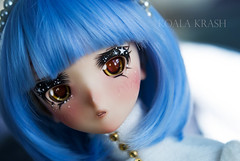 [Stary Night] (Koala Krash) Tags: anime doll manga sqlab bjd balljointdoll ball jointed koalakrash koala krash crybaby kawaii cute pretty blue bluehair