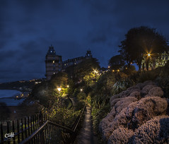 St Nicholas Cliff Gardens by Lamplight. Scarborough. (Distinctive Digital) Tags: footpath autumntime colorimage england exterior garden hotel lighting morning northyorkshire panorama portraitorientation scarborough shrubs trees urbanphotgraphy vignette