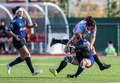 _SJL5784.jpg (Welsh_Si) Tags: cardiff october ladies rugby 22102016 23102016 blues dragons wales womensregionalrugbyround3 gwent team sport ystradmynach centreofsportingexcellence game welsh derby