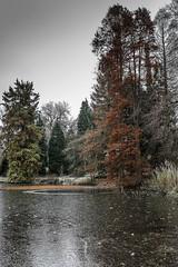 Erster Frost - 0019_Web (berni.radke) Tags: ersterfrost frost raureif wassertropfen rime eisblumen eiskristalle iceflowers icecrystals escarcha