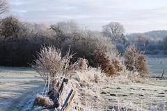 Winterlandschaft (nehad1) Tags: landschaft winter felder fields nature