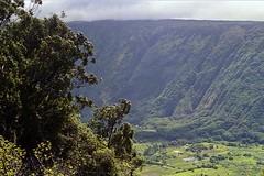 Waipio Valley (AntyDiluvian) Tags: hawaii 2001 30thanniversary bigisland waipio valley waipiovalleylookout lookout