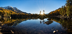 The last rays (Martin Häfeli Photography) Tags: lagodisaoseo graubünden switzerland grisons laghdisaoseo lake see bergsee berge sonne sonnenuntergang sunset nikon d7200 nikkor 1024mm wideangle wide angle weitwinkel panoramic panorama mountains gelb orange green blue rays stern sonnenstern sunrays sunlight beam lächen lärche larch reflection spiegelung valdacamp poschiavo swiss suisse trees tree wood stone snow