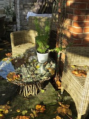 5804 Autumn Patio (Andy - Busyyyyyyyyy) Tags: 20161110 autumncolour bhday13 broughholiday ccc chairs harome leaves lll ooo orange patio pergola ppp seats sss tables thepheasantinn ttt yorkshire