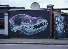 shok-1 (Claudelondon) Tags: eastlondon london walthamstow graffiti streetart