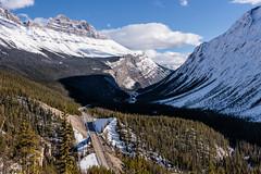 Sunwapta Sprinkled with Snow (Kristin Repsher) Tags: alberta autumn banff banffnationalpark canada canadianrockies d750 icefieldsparkway mountains nikon pass rockies rockymountains snow sunwaptapass