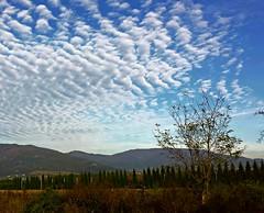 Sky of Tuscany  - Italy (amos.locati) Tags: sky tuscany toscana cer ciel azul albastru azzurro pistoia panorama landscape italia italy amos locati nuvole clouds nori