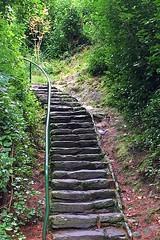 Hillside Steps, Garinish Island (AntyDiluvian) Tags: ireland tour vagabond driftwood glengarriff garinishisland hilly steps stairs