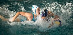 2C041308 (roel.ubels) Tags: len euro league waterpolo sport topsport utrecht uzsc 2016 krommerijn women